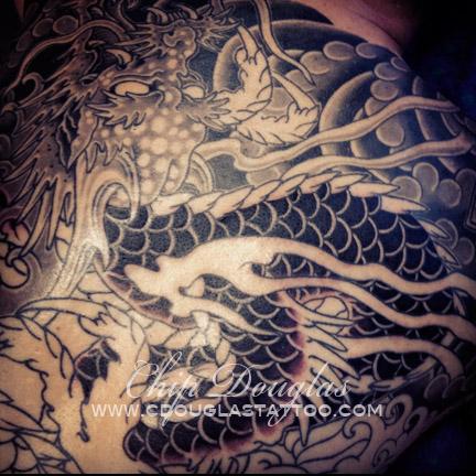dragonbackprog