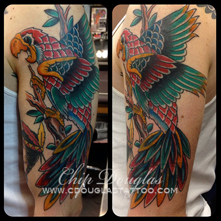 parrot coverup